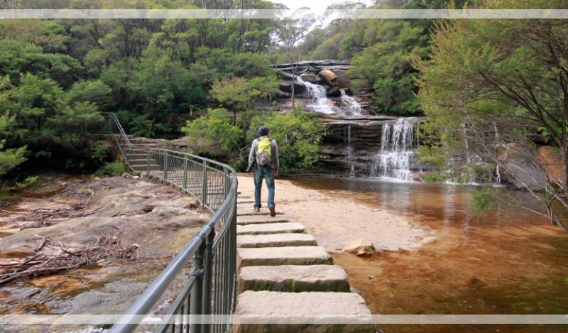 Full-day Blue Mountains Sightseeing Tour