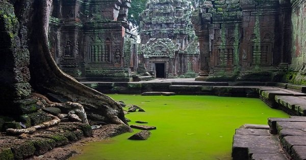 Angkor Photo Tour in Siem Reap