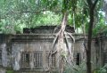 Full Day Hidden Temples & Jungle Temple in Beng Melea Private Tour