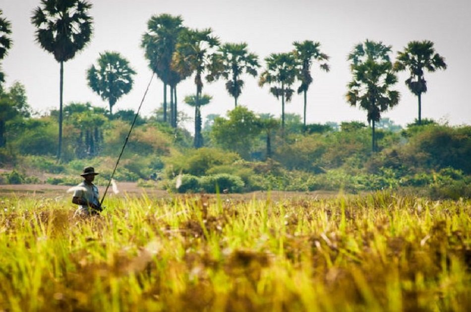 Half Day in Siem Reap With Quadbike