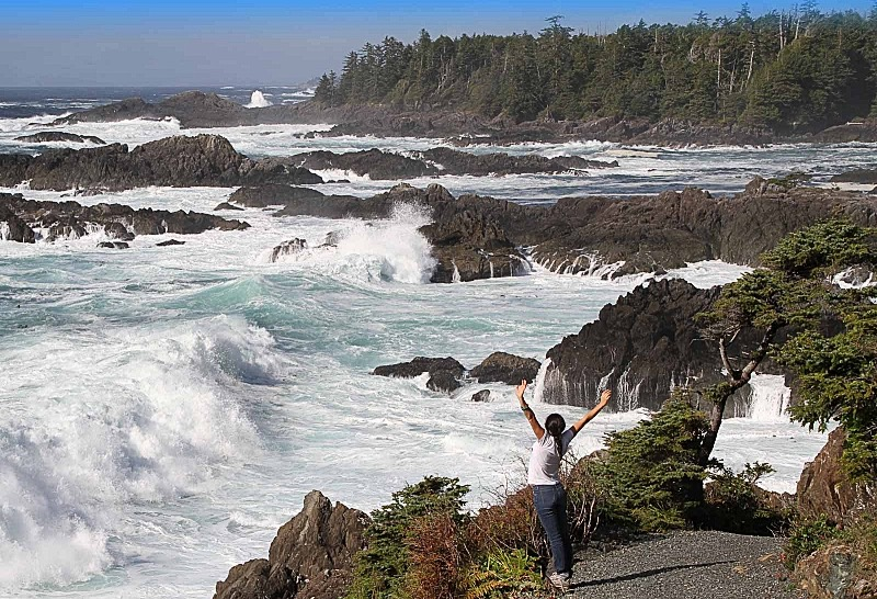Tofino and Vancouver Island's West Coast Tours