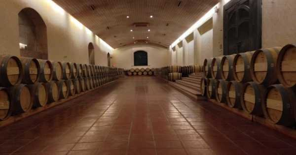 Concha Y Toro Winery - Living the Legend
