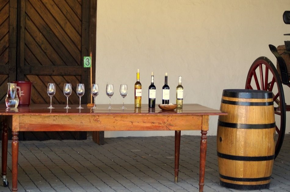Undurraga Winery - Wines With Trajectory and Innovation