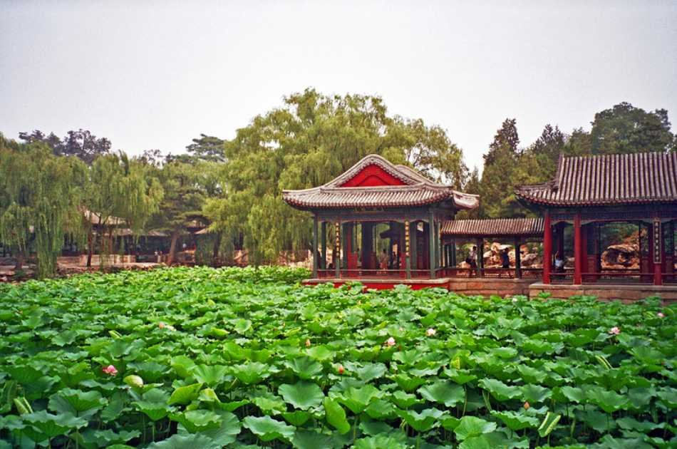 Customizable Beijing Imperial Private Tour With Roast Duck Dinner and Evening Show