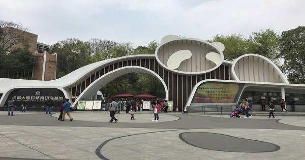 Private Day Tour of Chengdu Giant Panda Base and City Highlights