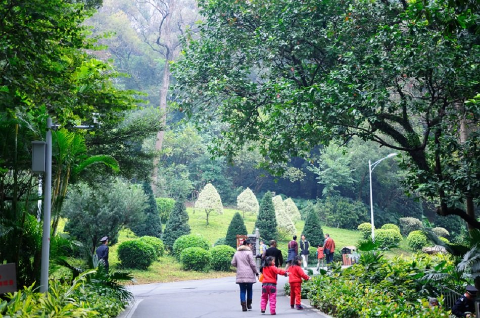 Private Day Tour of Guangzhou Highlights