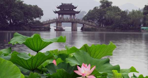 Private Day Tour of Hangzhou Highlights From Shanghai