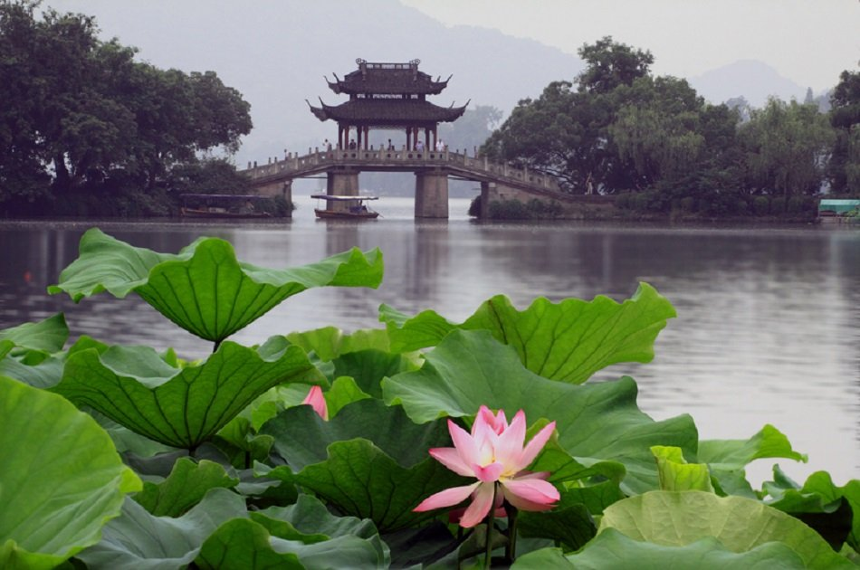 Private Hangzhou Day Tour of Water Town and West Lake