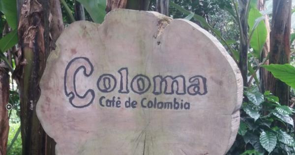 Private Coffee Tour to Hacienda Coloma From Bogota