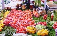 Best Food Tour of Prague