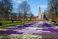 Copious of Attractions to See on this 3 Hour Copenhagen Walking Tour