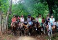 Samaná Day Trip: Cayo Leventado, El Limon Waterfall and Horseback Riding from Puerto Plata