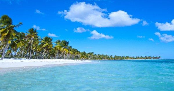 Saona Island Discovery Way
