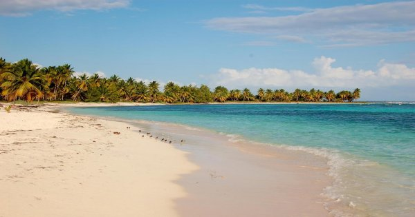 Saona Island tour from Santo Domingo