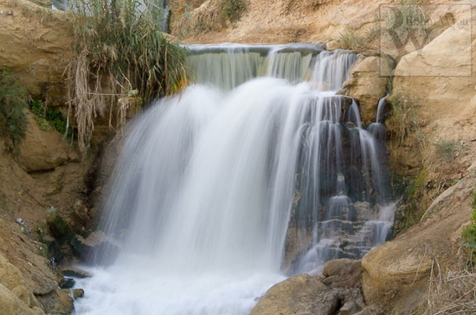 Bird Watching Tour to El Fayoum from Cairo