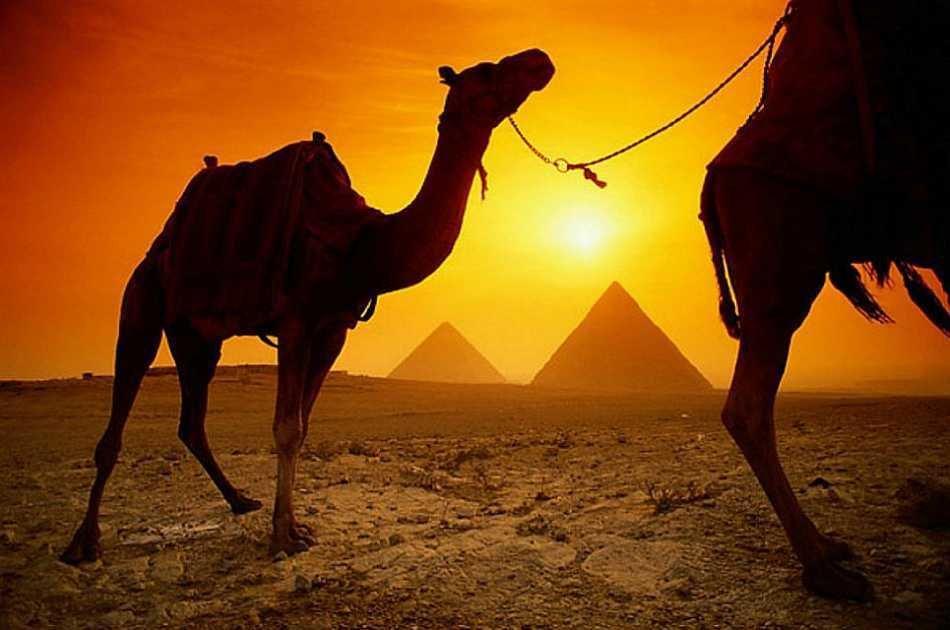 Great Pyramids & Sphinx, Saqqara Step Pyramids and Dahshour From Cairo