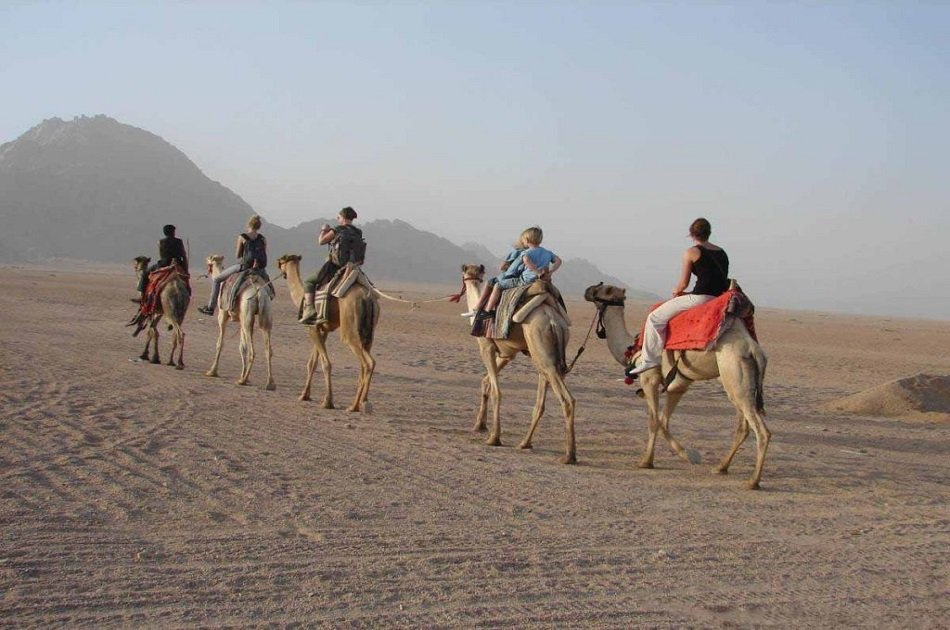 Luxor Private City Tour By Horse & Carriage