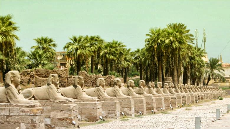 Private Guided Luxor Experiences