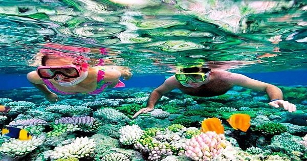 Snorkeling at Giftun Island in Hurghada