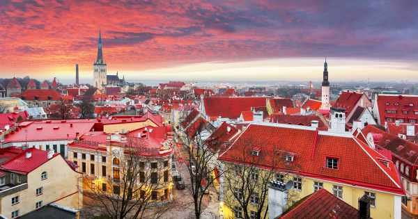 Guided Tallinn Day Sightseeing Small Group Tour From Helsinki