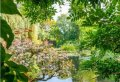 Half Day Audio Guided Tour of Giverny Monet's Gardens from Paris