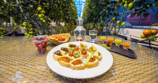 Delicious Golden Circle Private Food Tour