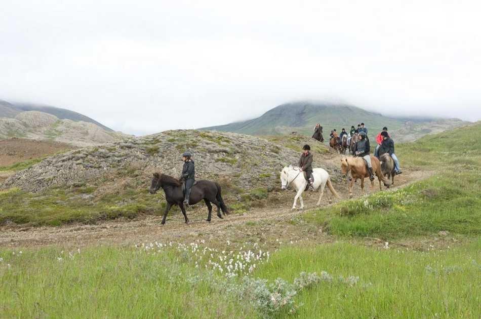 Viking Horse Riding & Golden Circle Tour