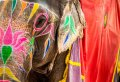 10 Day Golden Triangle Tour With Ranthambore Tiger Reserve