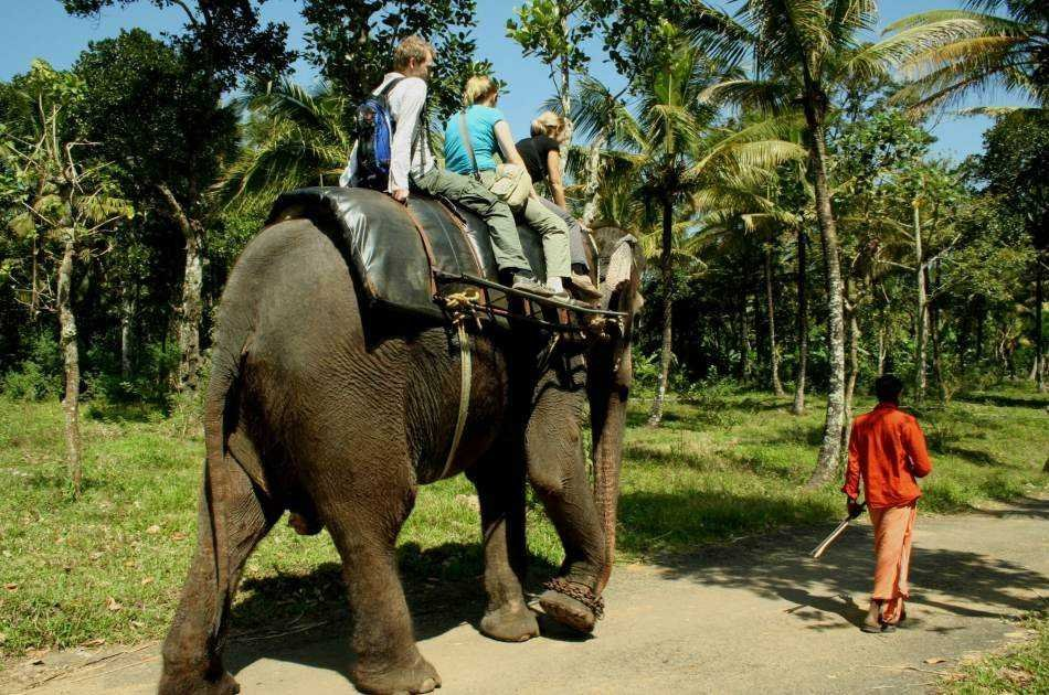 11 Day Guided Private Tour of India