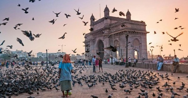 Full-Day Private City Tour of Mumbai