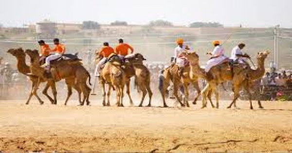 Best of Rajasthan with Tiger Safari Tour (14 Nights /15 Days)