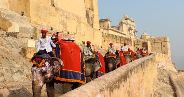 TASTE OF INDIA | Explore Best of India in 10 Days
