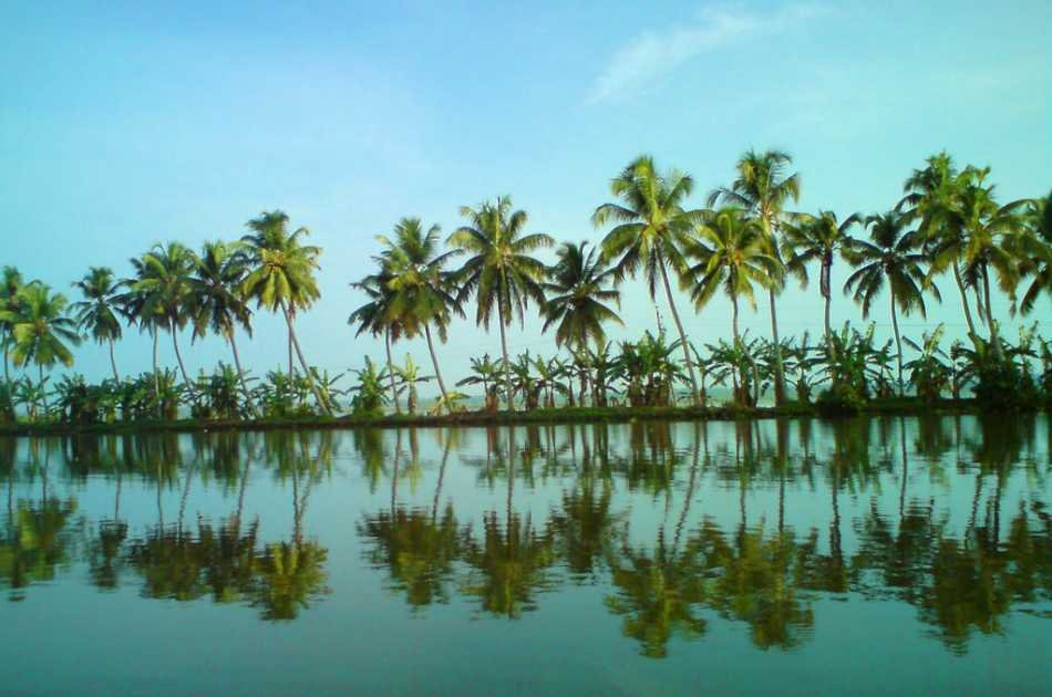 Private Kerala Backwater Houseboat Day Cruise Tour from Kochi