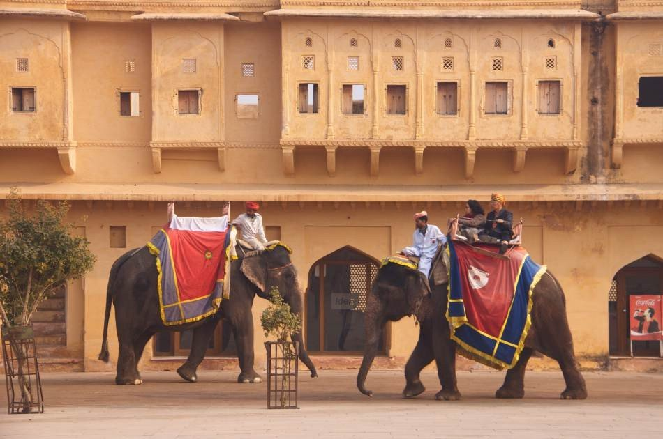 Private Rajasthan 10 Day Honeymoon Tour from Delhi