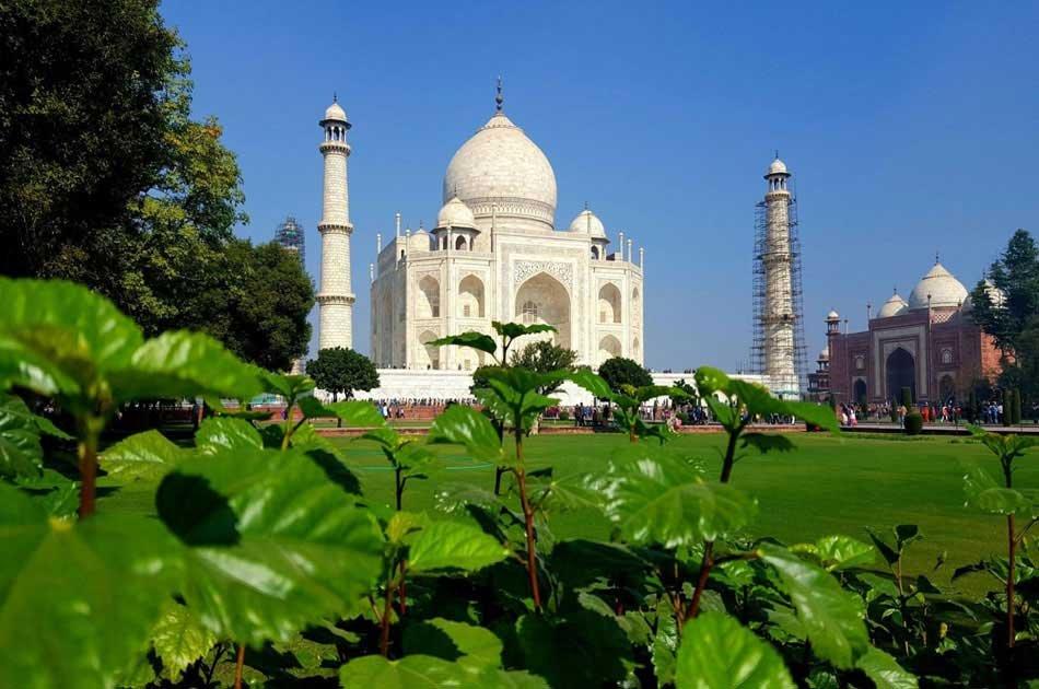 Taj Mahal Guided Private Tour From Delhi