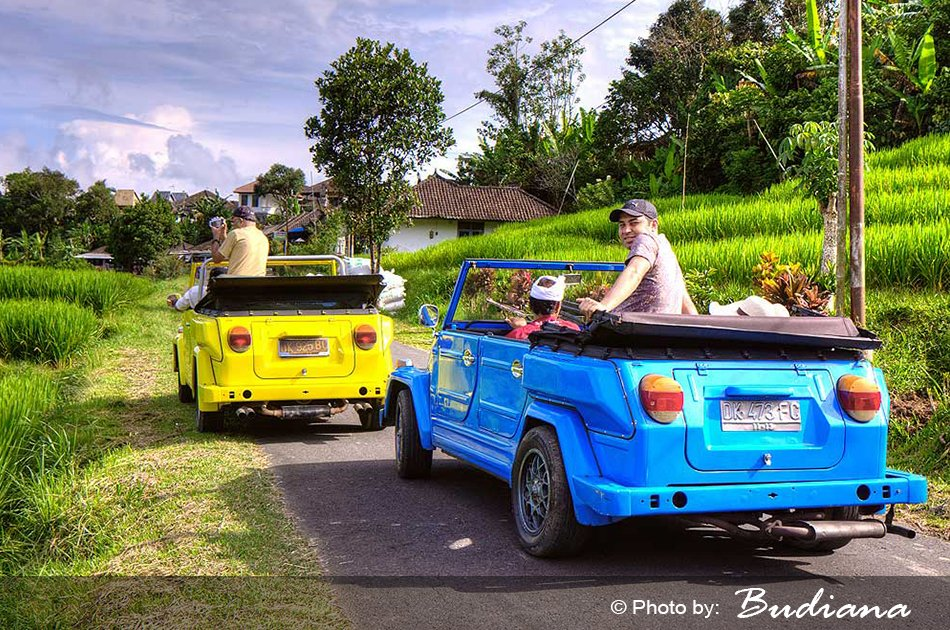 8 Hour VW Safari Rental With Driver