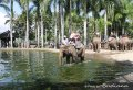 Bali Animals Lover Day Tours