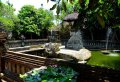 Full Day Private Tour of Kintamani Bali