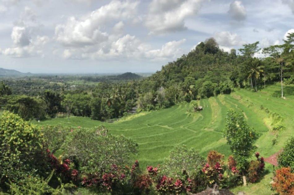 Fun Day Ubud Rafting and Kintamani Volcano Tours