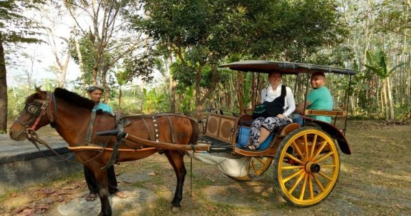 Horse Carriage Village Tours in Borobudur, Yogyakarta
