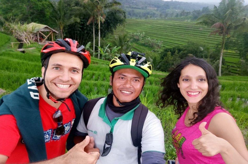 Jatiluwih & Surroundings E-bike Cycling Tour With Waterfall