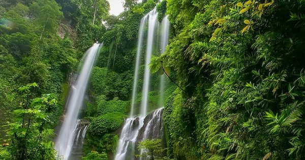Private Hiking Tour at the Stunning Sekumpul Waterfall, Bali