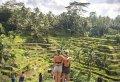 Surface of Ubud - Half Day Tour