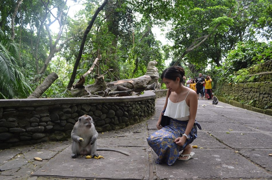 Ubud Private sightseeing tour with Lunch