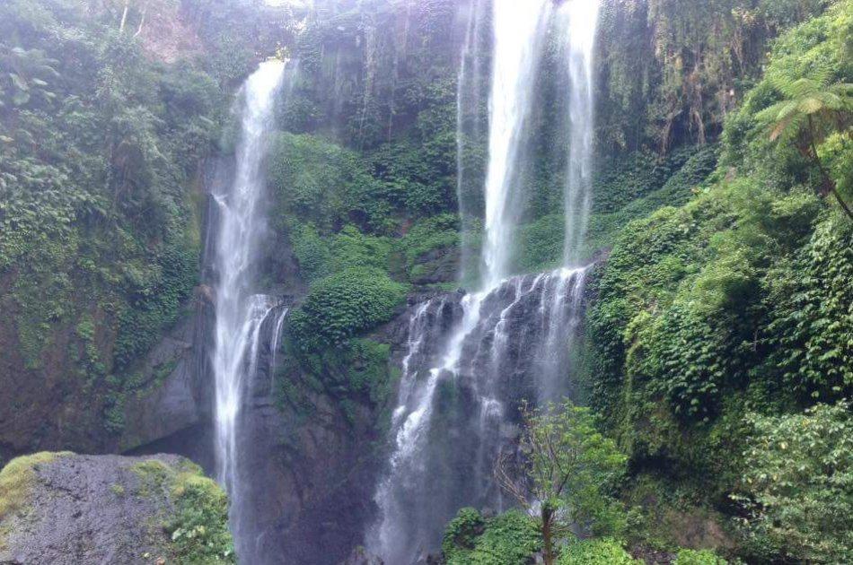 Ubud Sightseeing  Full Day Tour