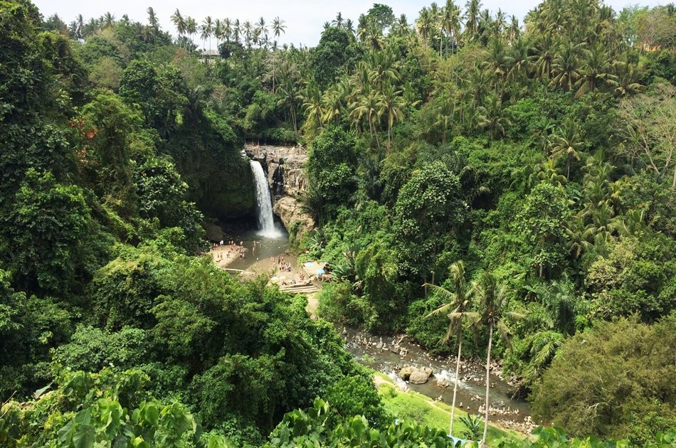 Ubud Tour with Private Car and Tour Driver