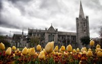 Amazing Dublin and the Ring of Kerry Tour