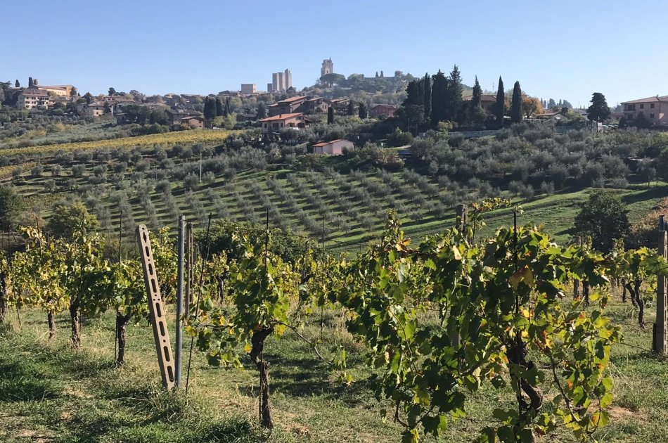 Chianti and San Gimignano Private Luxury Tour From Florence