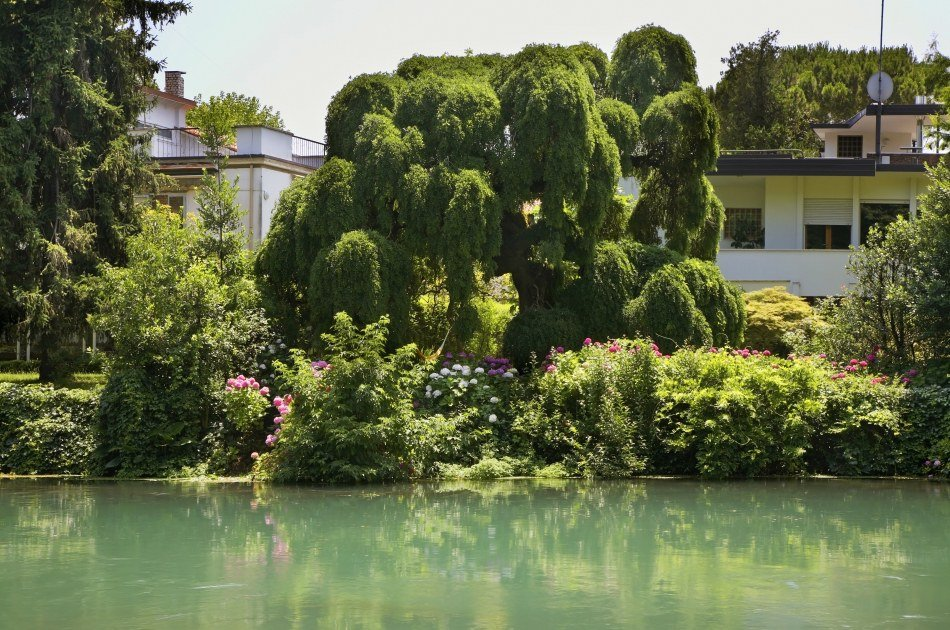 Discover the Secret Gardens of Venice