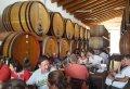 Etna Wine Tasting Tour From Messina